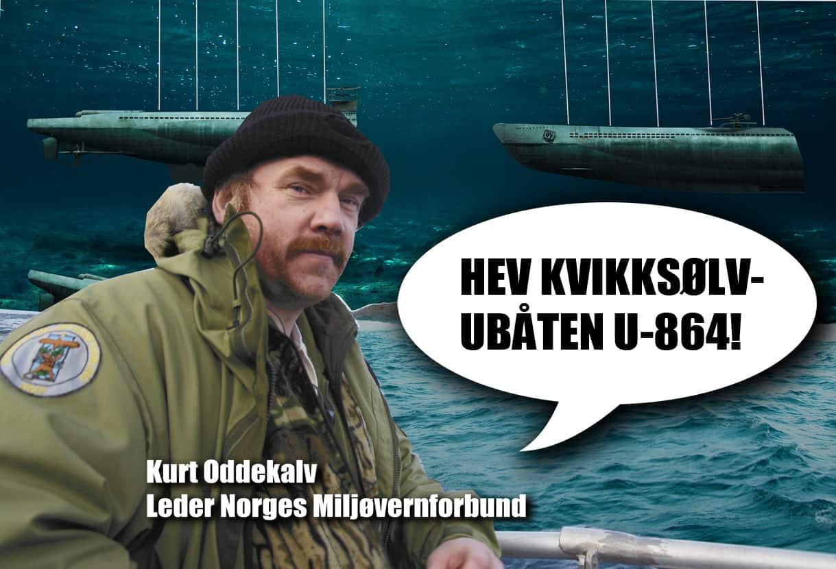 Ekspertpanelet for U-864 trenger en miljøorganisasjon
